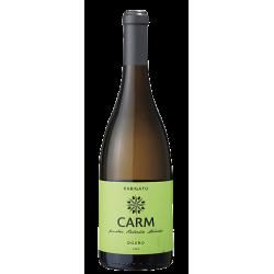 CARM Rabigato 2018