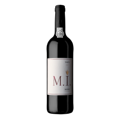 M. I. Tinto 2017